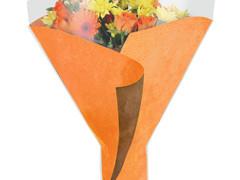Hzn 52x44x12cm Opp50mu Kraftline oranje