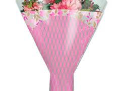 Hzn 52x44x12cm  OPP40mu Friendly roze