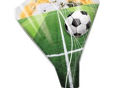 Hzn 52x44x12cm  OPP50mu Goal