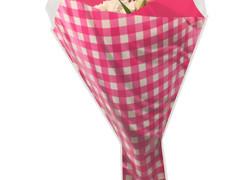 Hzn 52x44x12cm  OPP50mu Gingham roze