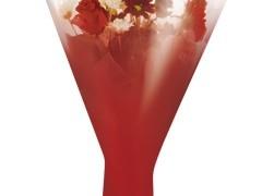 Hzn 52x44x12cm  OPP40mu Usual metallic rood