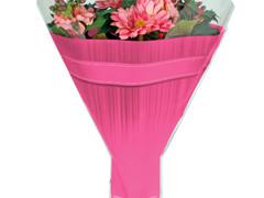 Hzn 52x44x12cm  OPP40mu Allround roze