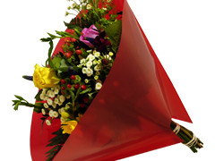 Hzn 35x35cm angelo OPP50mu Volvlak Pearl rood