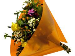 Hzn 35x35cm angelo OPP50mu Volvlak Pearl oranje