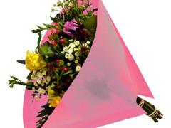 Hzn 40x40cm angelo OPP50mu Volvlak Pearl roze