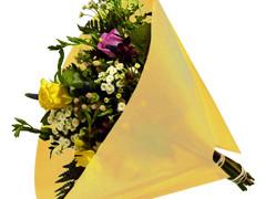 Hzn 40x40cm angelo OPP50mu Volvlak Pearl geel