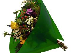 Hzn 40x40cm angelo OPP50mu Volvlak Pearl groen