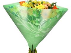 Hzn 40x40cm angelo OPP50mu Shade groen