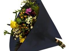Hzn 50x50cm angelo OPP50mu Volvlak Pearl zwart