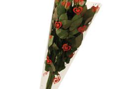 Hzn 50x30x10cm  OPP40mu Love rood