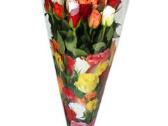 Hzn 50x35x10cm  OPP40mu Rose Mix