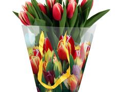 Tas Tulip Mix PP 24/12x11xH26cm