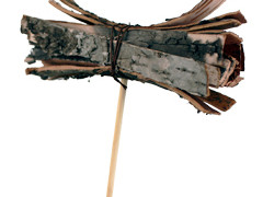 Bijsteker Berk bundel 8cm+50cm stok naturel