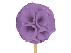 Bijsteker Sola ball 4-5cm+50cm stok lila