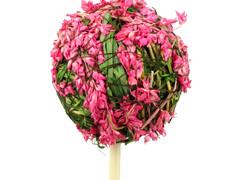 Bijsteker Lavendel bal 5cm+50cm stok roze