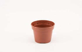 Pot 11 cm 8gr 3P YB TC (solitair)300K