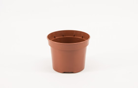 Pot 12 cm 5gr 3P YB TC (solitair)300K