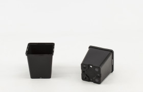 Vierkante pot 11x11x12 cm EH