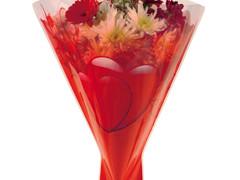Hzn 52x35x10cm  OPP40mu Lovely rood