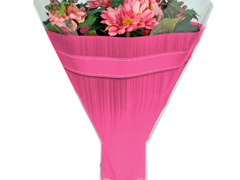 Hzn 52x35x10cm  OPP40mu Allround roze