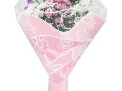 Hzn 52x44x12cm  OPP50mu Lady roze