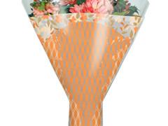 Hzn 52x44x12cm  OPP40mu Friendly oranje