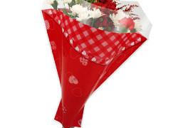 Hzn 52x44x12cm  OPP50mu Patch Hearts rood