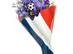 Hzn 52x44x12cm  OPP40mu Vlag Frankrijk / Nederland