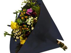 Hzn 40x40cm angelo OPP50mu Volvlak Pearl zwart