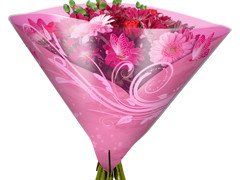 Hzn 40x40cm angelo OPP50mu Shade roze