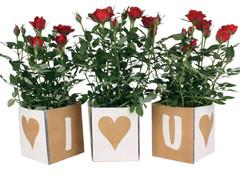 Tas I Love U PP 9,5x9xH11cm