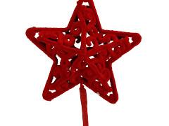 Bijsteker Roque ster 6cm+50cm stok rood