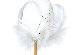 Bijsteker Kievit ei met veren 6cm+50cm stok wit