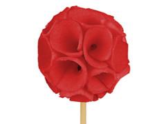 Bijsteker Sola ball 4-5cm+50cm stok rood