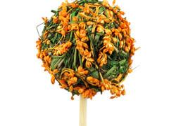 Bijsteker Lavendel bal 5cm+50cm stok oranje