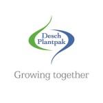DP logo2
