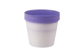 Classic Pot Exclusive w_lilac