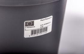 Potten met Plantenpaspoort-sticker